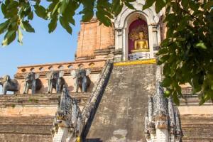 Chiang Mai-1114
