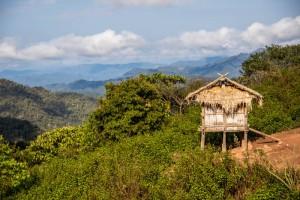 Laos_Roundup-1774