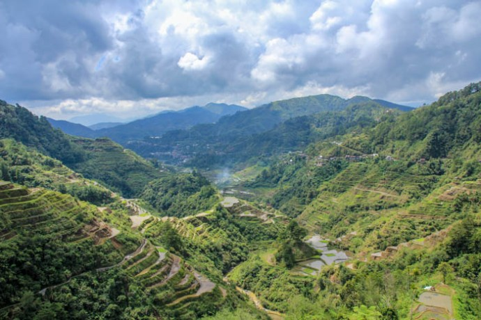 The terraces of Banaue. These are mud walled and after Batad, were not so impressive anymore.