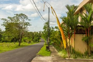 The road to Canggu.
