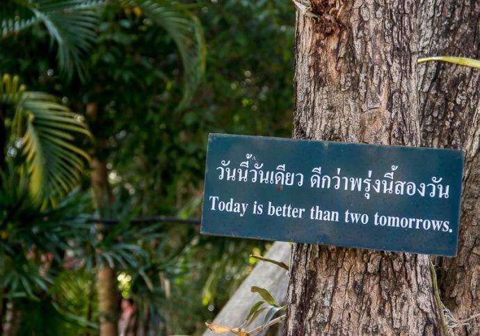Temple garden Chiang Mai, Thailand