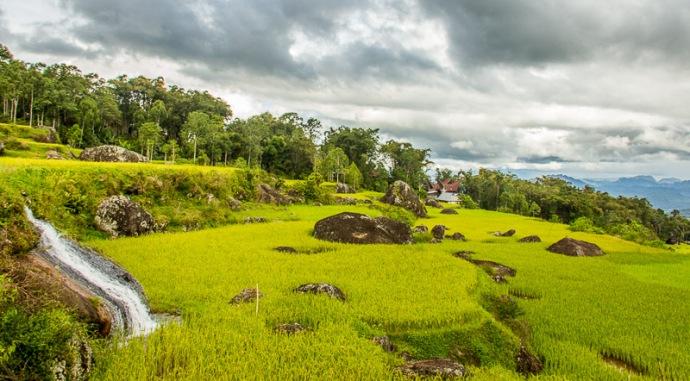 Tanah Tpraja - Sulawesi